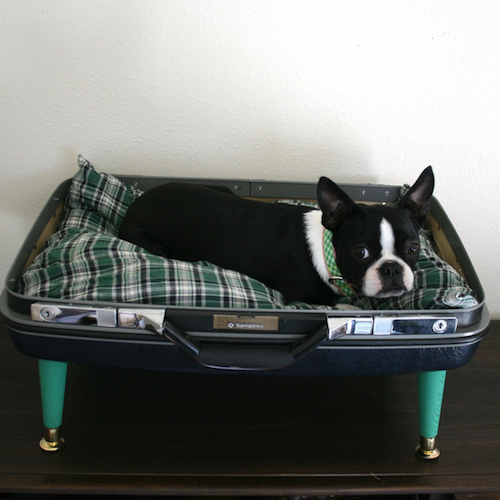 Vintage-pet-bed-sq