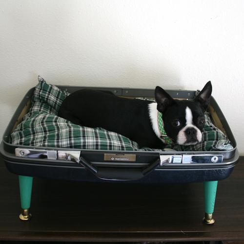 Vintage-pet-bed-sq