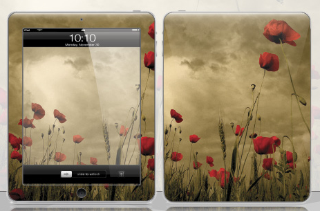 Golden-summer-ipad-case