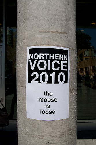 Norther Voice - The Moose is Loose
